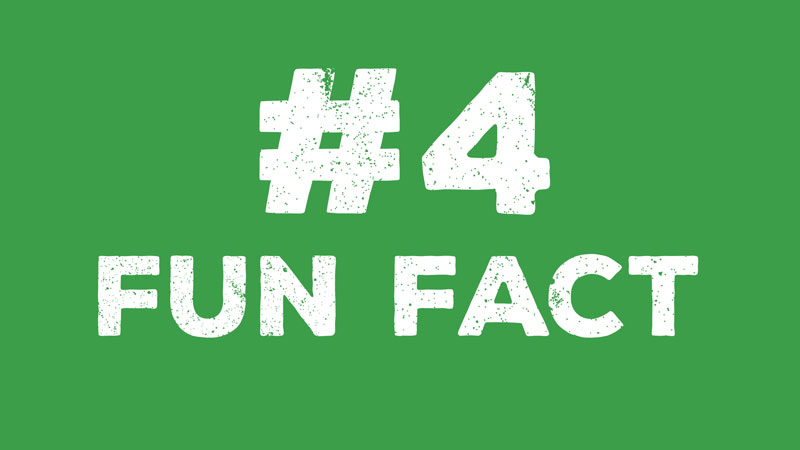 ComHem Fun fact 4 Animation Informationsgrafik Produktionsbolag Stockholm